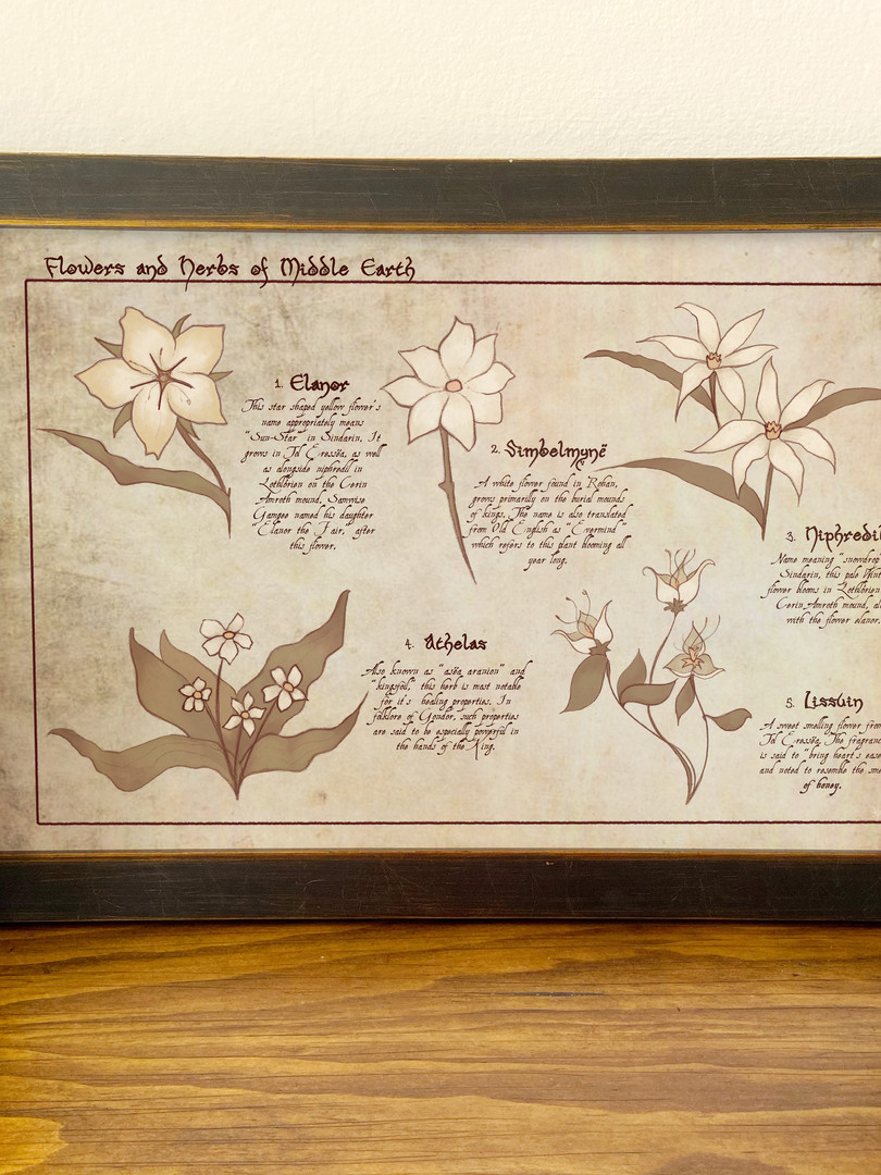 middle earth flowers