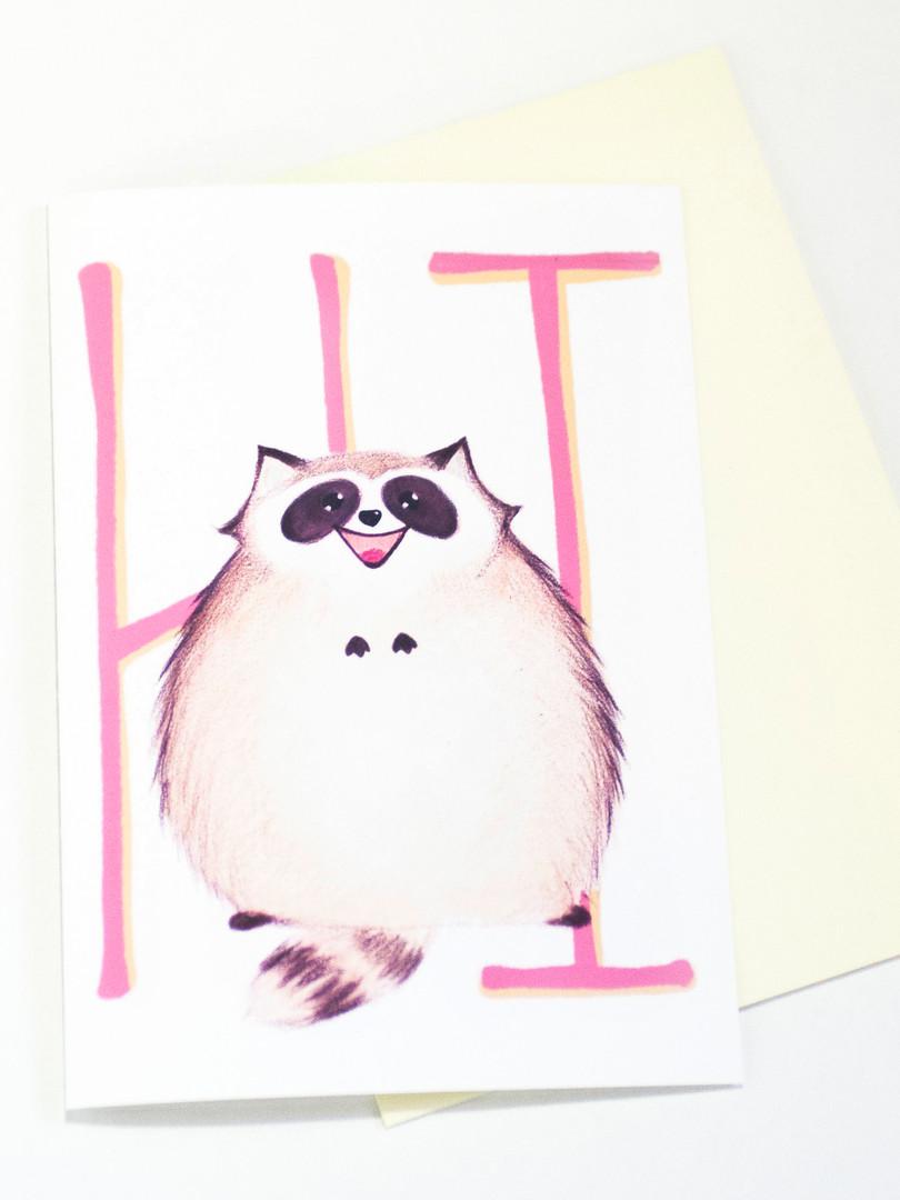 raccoon hi