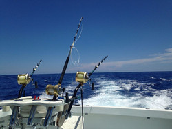 Offshore fishing Bermuda