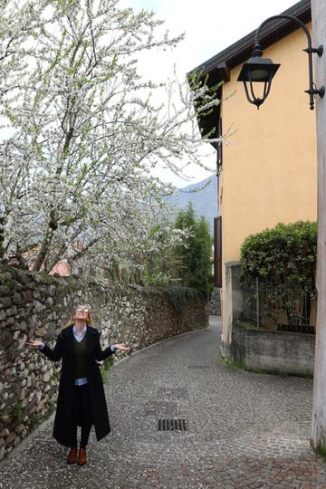City Story: Salò, Lake Garda