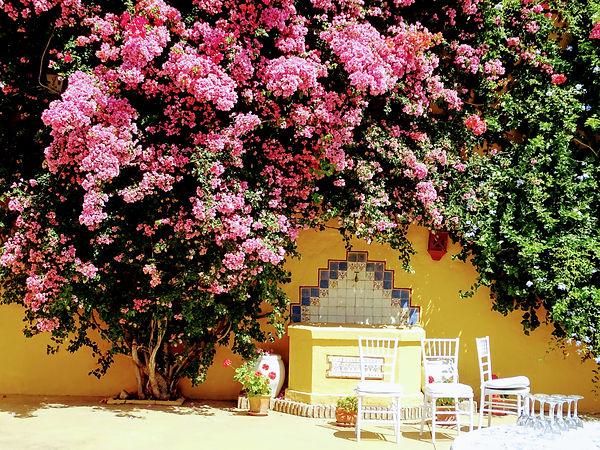 Cortijo_el_alamillo_de_Cordoba,_Andaluci