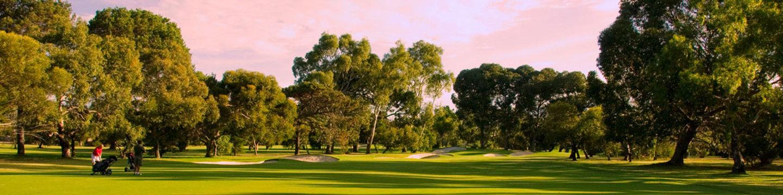 golf 111.jpg