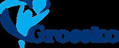 лого Гросско.png