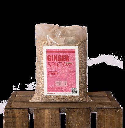Blend Ginger Spicy Cereal Beer 5l