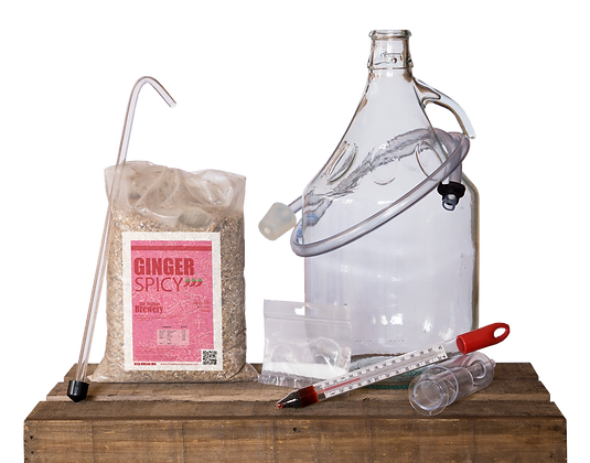 GINGER SPICY - HOME MADE Beer Kit 5l