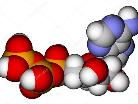 Valtti+ Lihasten energia-aineenvaihdunnan perusteet