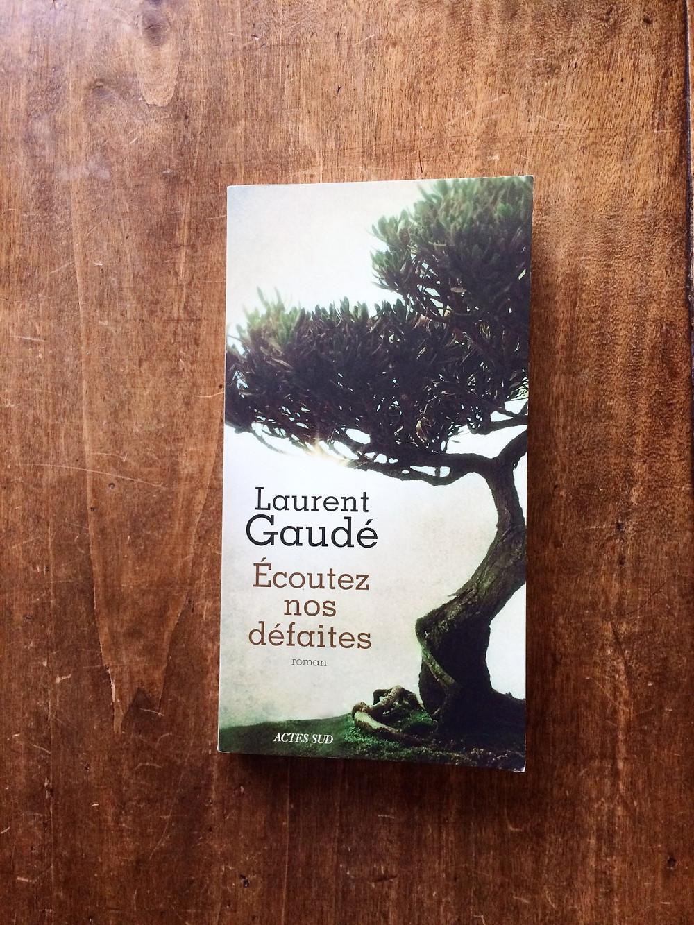 Photo : Laurent Gaudé, Ecoutez nos défaites