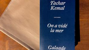 On a vidé la mer, Yachar Kemal