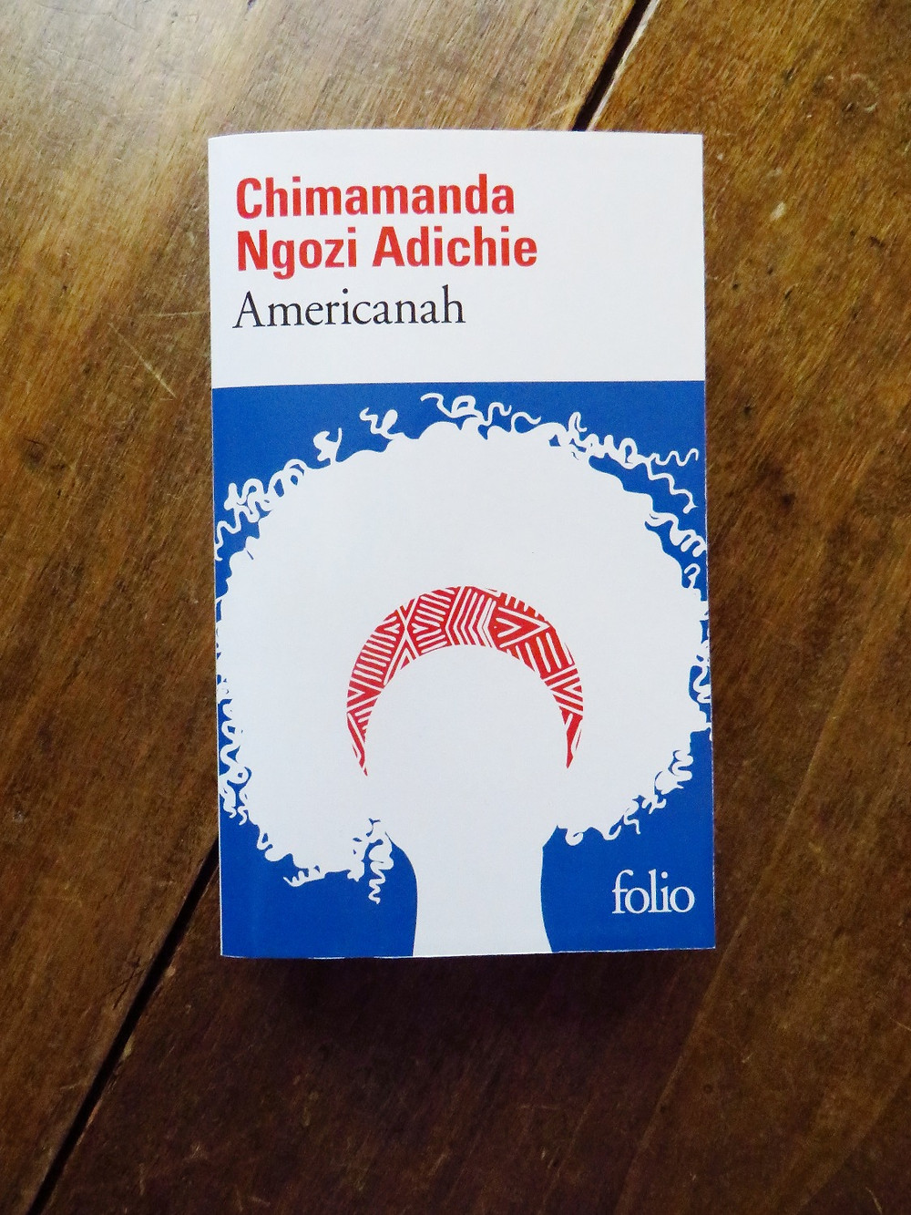 Photo du livre Americanah, de Chimamanda Ngozi Adichie (1)