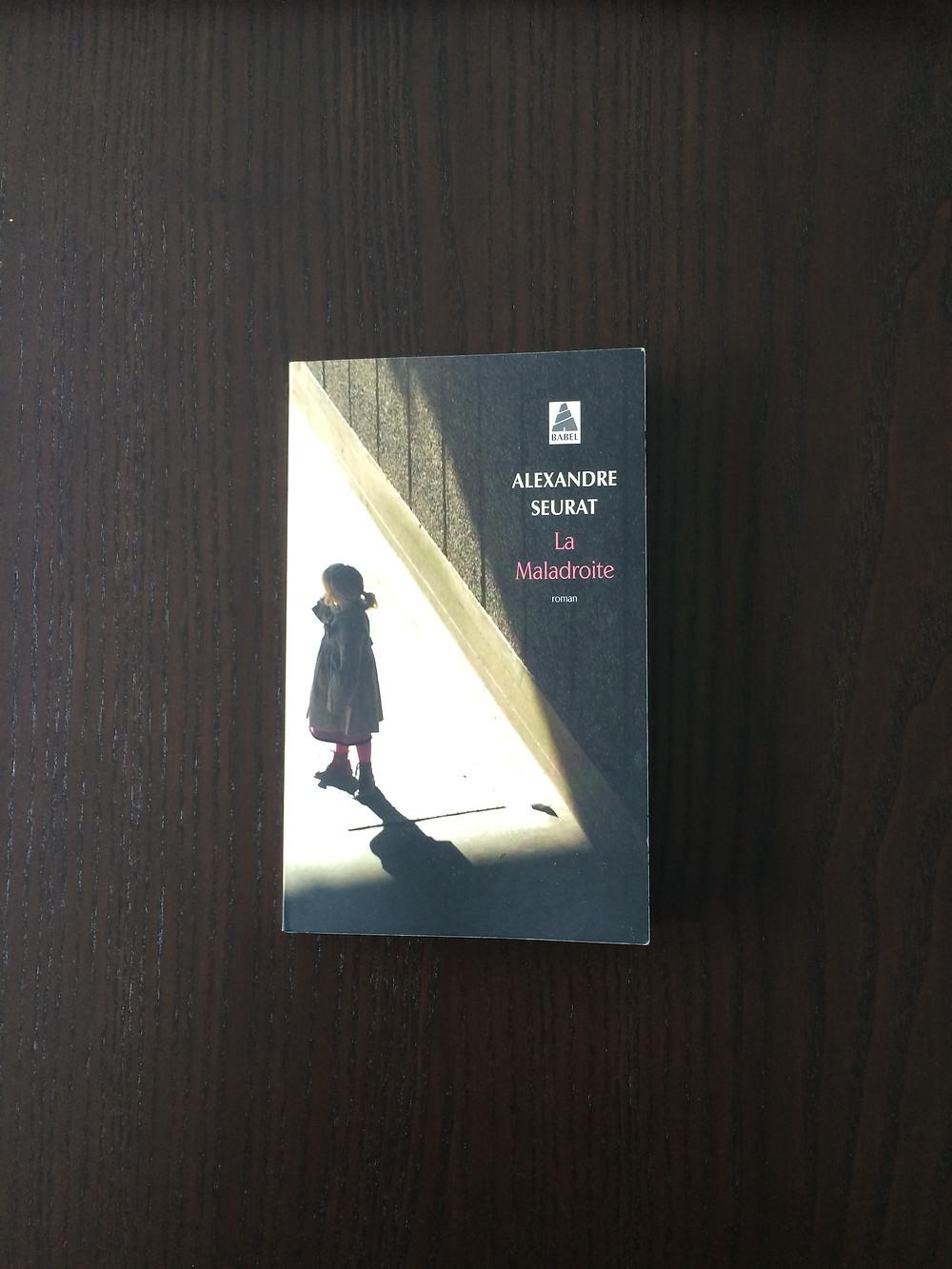"""Photo du livre """"La Maladroite"""" d'Alexandre Seurat (1)"""