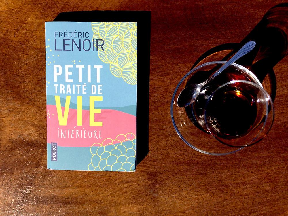 Photo du livre Petit traité de vie intérieure, de Frédéric Lenoir (2)