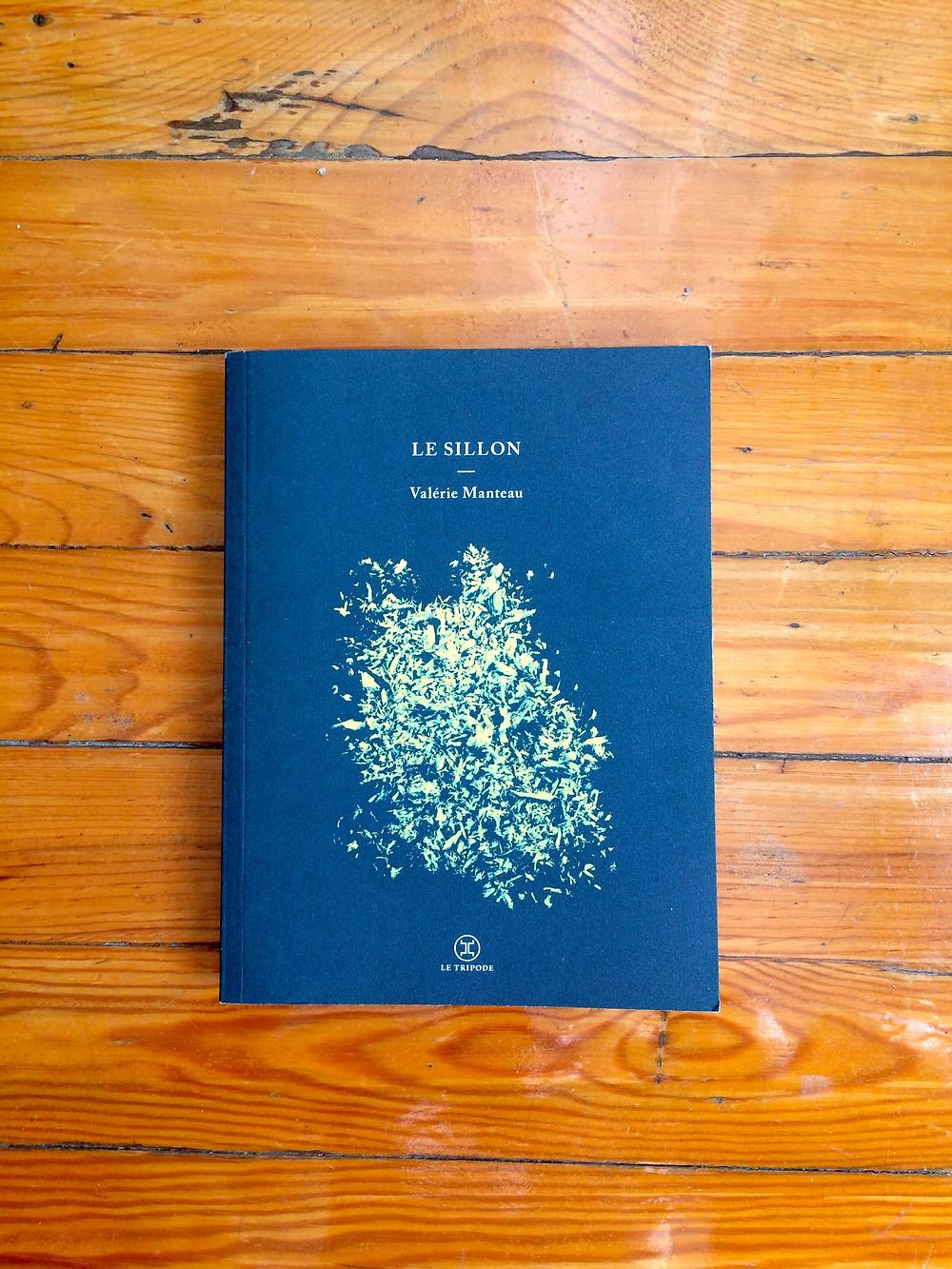 """Photo du livre """"Le Sillon"""" de Valérie Manteau (1)"""