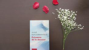 Puissance de la douceur, Anne Dufourmantelle
