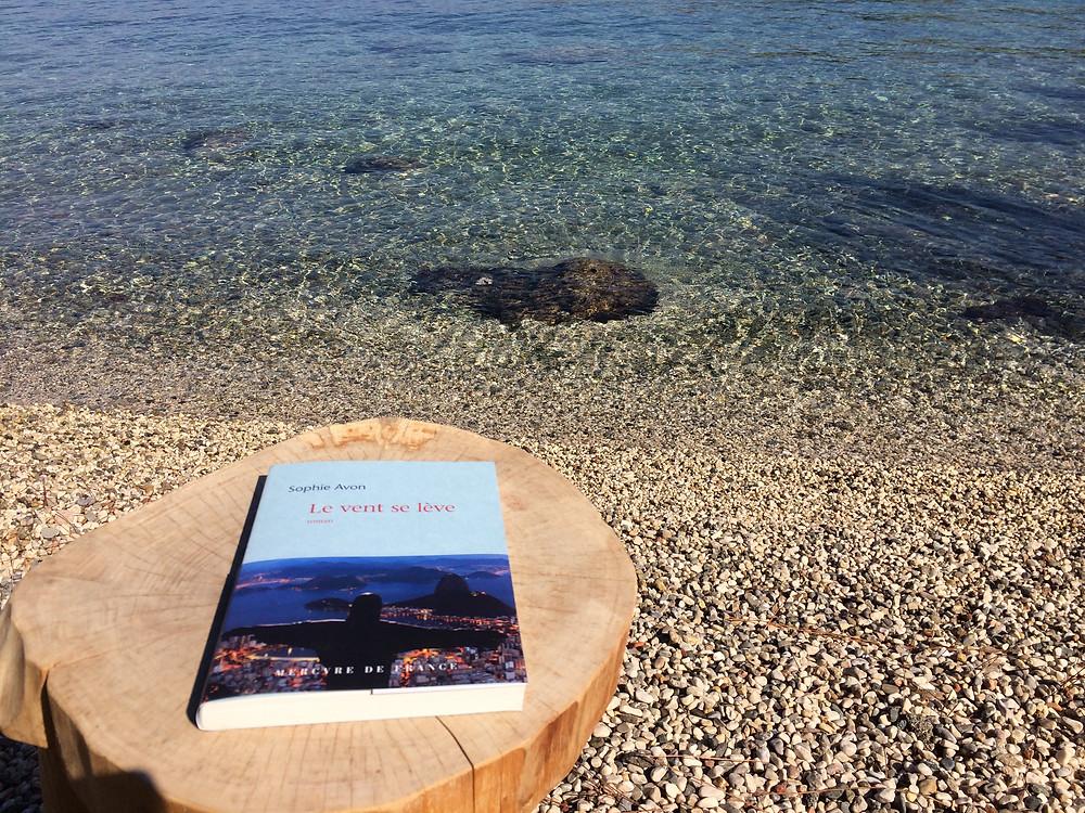 """Photo du livre """"Le vent se lève"""" de Sophie Avon (2)"""