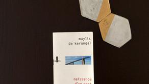 Naissance d'un pont, Maylis de Kerangal