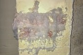 Efflorescence on interior walls