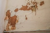 Peeling and blistering of wallpapers and paints