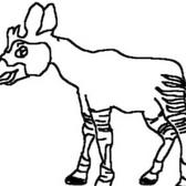 Early Okapi