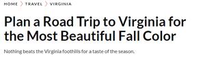 magazine article headline