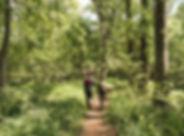 montpelier trails 1.jpg