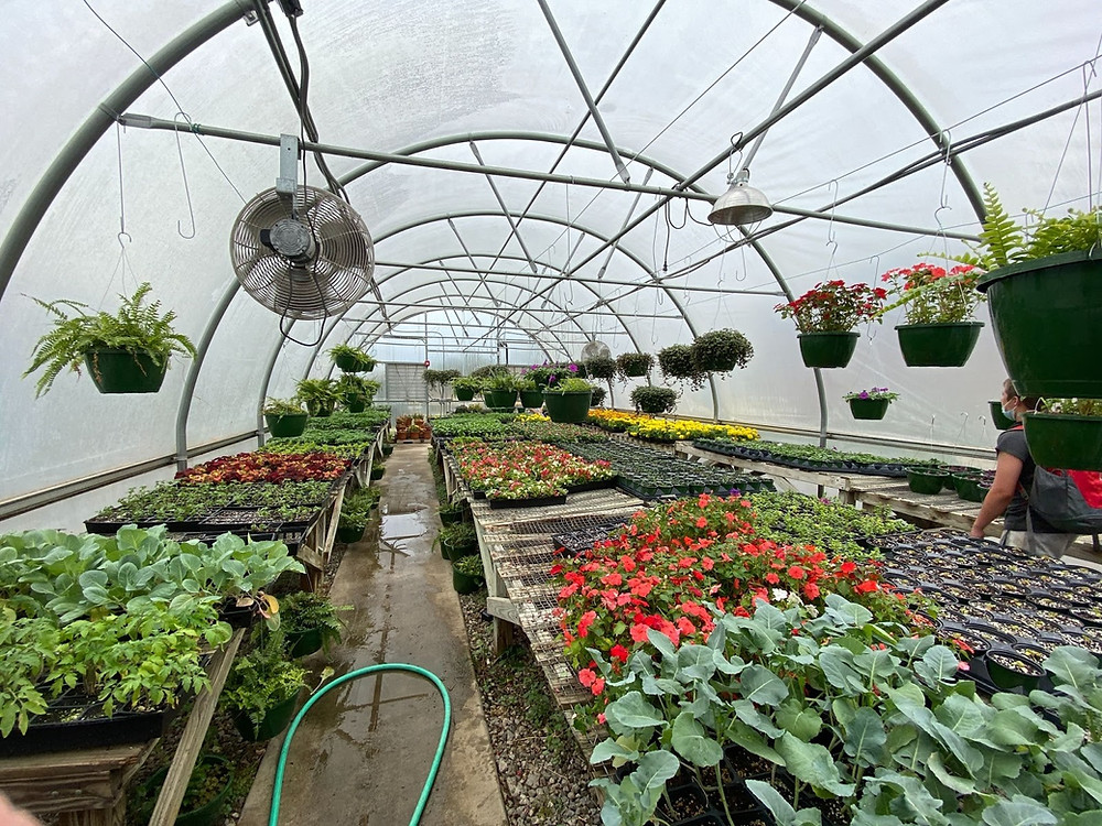 The West High Greenhouse.