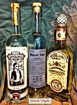 Mezcal : Tequila.JPG