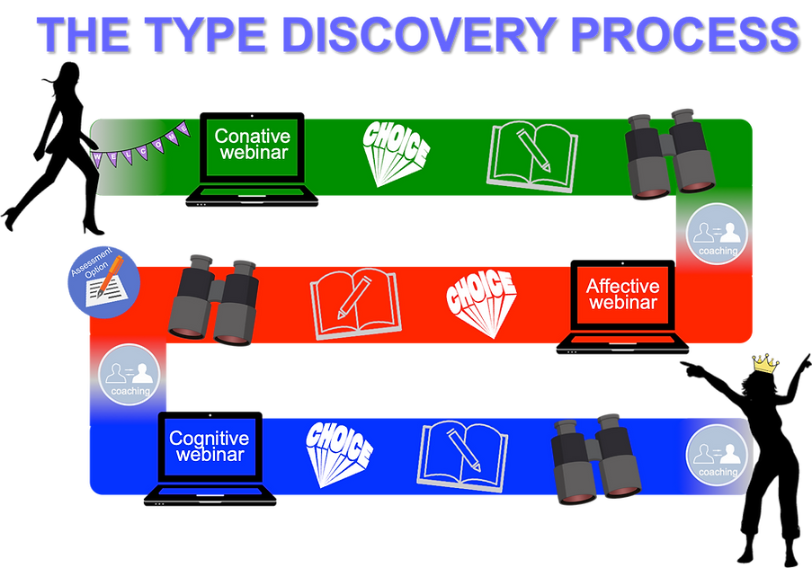 The Type Discovery Process.png