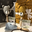 Thumbnail: Sambabeer rammelaar