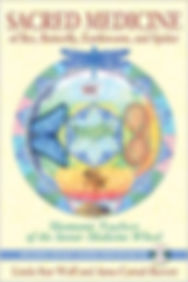 Instar Medicine Wheel.jpg