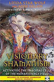Visionary Shamanism.jpg