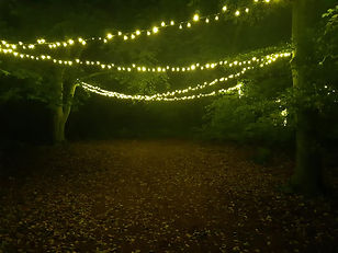 Fairy Lighting Pic 1.jpg