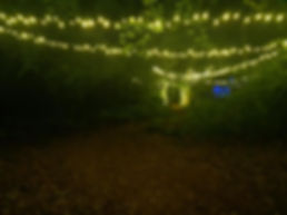 Fairy Lighting Pic 2.jpg