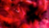 Screenshot 2020-05-24 at 15.27.39.png