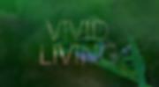 vivid.png