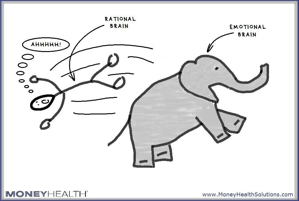 elephant and rider - emotional flooding
