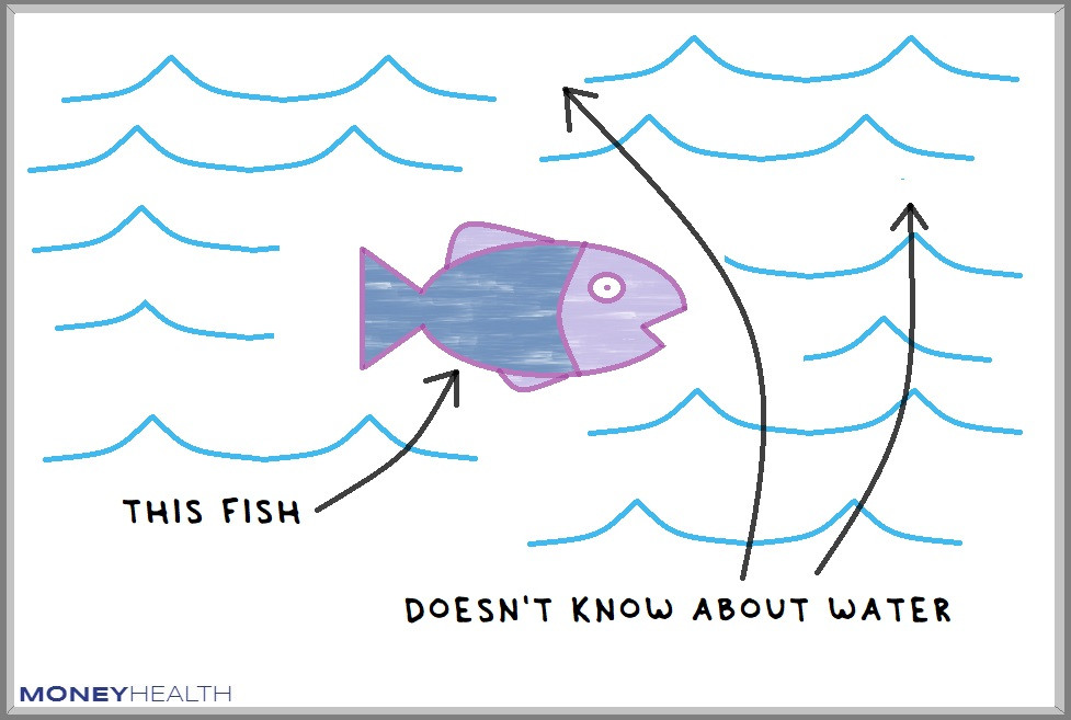fish don't understand water