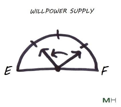 willpower supply