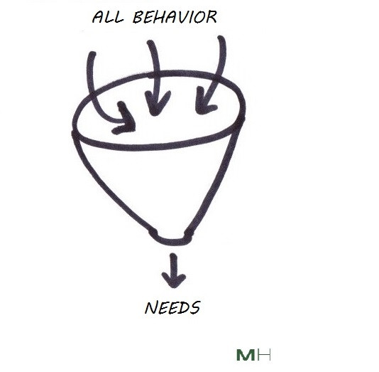 all behavior is an attempt to meet a need
