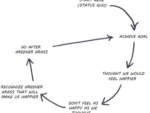 The Grass is Always Greener: Adaptation and Emergencies