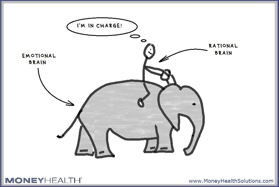 elephant and rider - no emotional flooding
