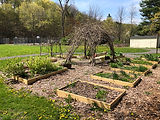Community_Garden_03.jpg