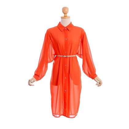 Zingy, Zesty Shirt Dress