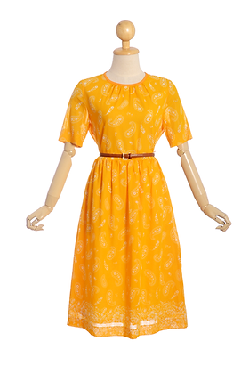 Paisley Please! Vintage Dress