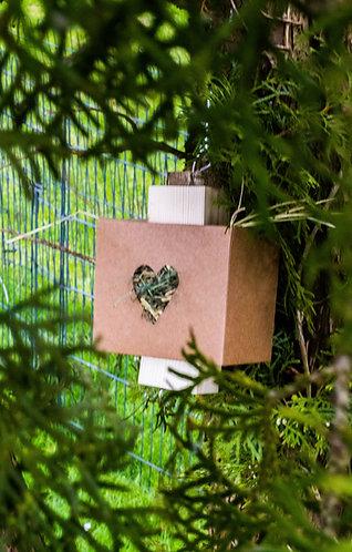 Binky Gerbil Forage Box