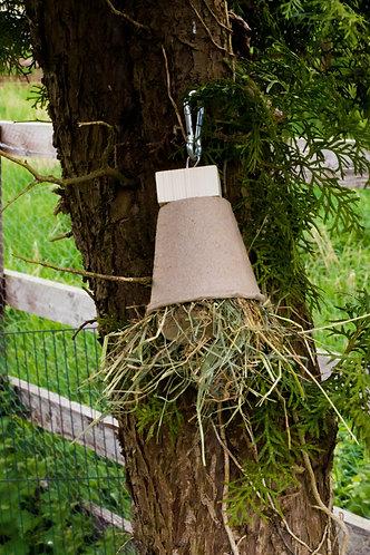 Binky Forage Bell