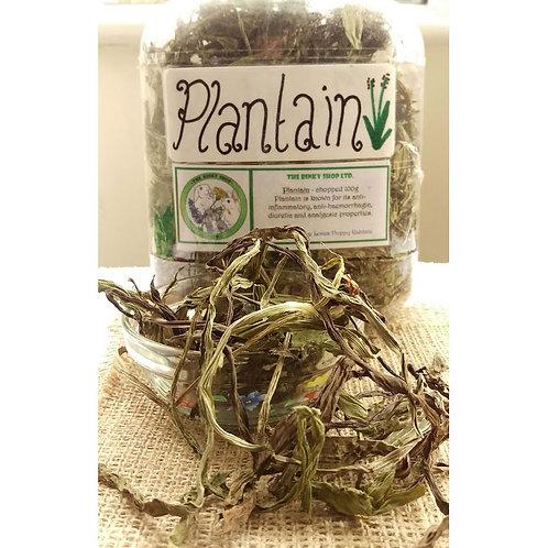 Plantain (100g)
