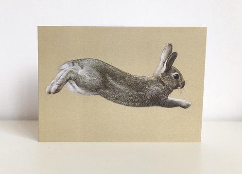 'Run Rabbit' greetings card