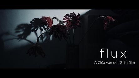 FLUX_Trailer.00_01_07_14.Still002.jpg