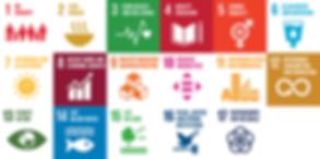 SDG image.png