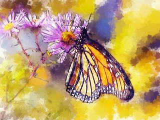 Petits papillons: Céleste chronique d'un voyage ailé